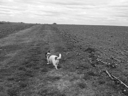 Otis leads the way.