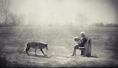 artistic-surreal-photomanipulation-by-sarolta-ban-31